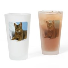 Abyssinian Cat 9Y009D-020 Drinking Glass