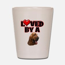 Loved by a Bloodhound Shot Glass