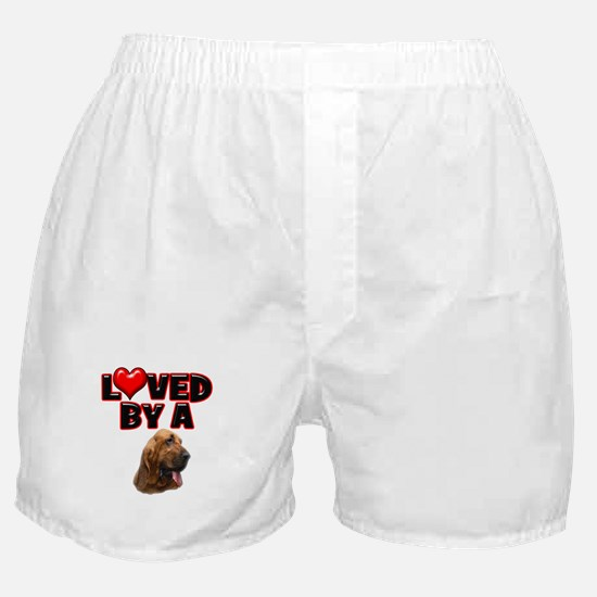 Loved by a Bloodhound Boxer Shorts