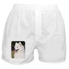Samoyed 9Y602D-127 Boxer Shorts