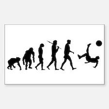Soccer Evolution Bumper Stickers