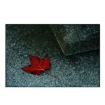 Fallen Leaf Postcards (Package of 8)