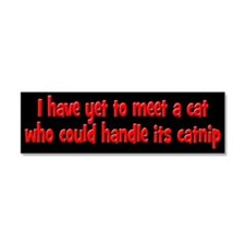 Cats and Catnip Car Magnet 10 x 3