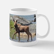 Calf at sunset Mug