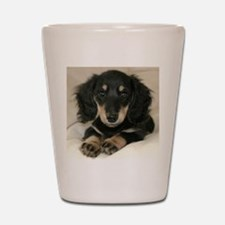 Long Haired Puppy Shot Glass