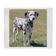 Dalmatian Puppy Throw Blanket