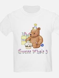 Third Birthday -text Teddy T-Shirt