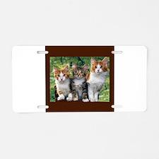 3 Cats Aluminum License Plate