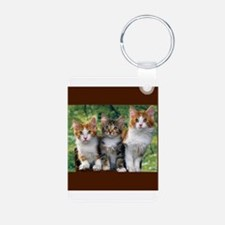 3 Cats Keychains