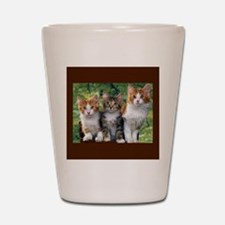 3 Cats Shot Glass