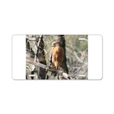 California Redtail Hawk Natur Aluminum License Pla