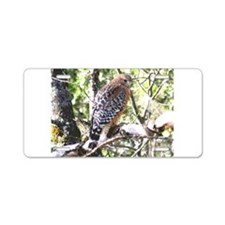 California Redtailed Hawk Aluminum License Plate
