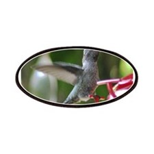 Humming Bird and Feeder Patches