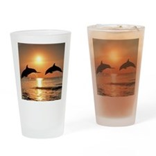 Two Dolphins Drinking Glass