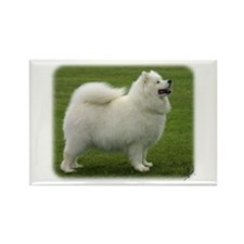 Samoyed 8T91D-02 Rectangle Magnet