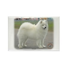 Samoyed 8w19d-18 Rectangle Magnet