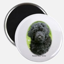 Russian Black Terrier 9T091D-030 Magnet