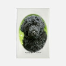 Russian Black Terrier 9T091D-030 Rectangle Magnet