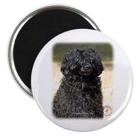 "Portuguese Water Dog 9R016D-151 2.25"" Magnet (10 p"