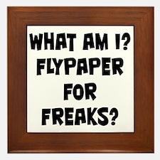 Flypaper for Freaks? Framed Tile
