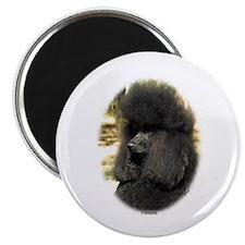 Poodle Standard 9F5D-02 Magnet