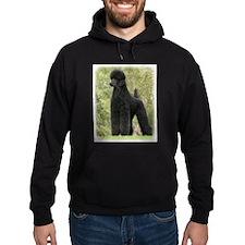 Poodle Standard 9Y181D-031 Hoodie