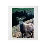 Mountain Sheep Throw Blanket