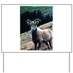 Mountain Sheep Yard Sign
