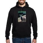 Mountain Sheep Hoodie (dark)