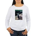Mountain Sheep Women's Long Sleeve T-Shirt