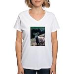 Mountain Sheep Women's V-Neck T-Shirt