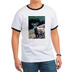 Mountain Sheep Ringer T