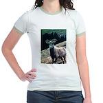 Mountain Sheep Jr. Ringer T-Shirt