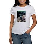 Mountain Sheep Women's T-Shirt