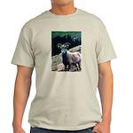 Mountain Sheep Light T-Shirt