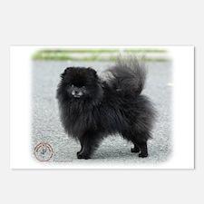 Pomeranian 9R042D-47 Postcards (Package of 8)