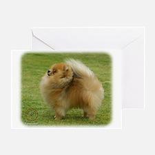 Pomeranian 9T072D-001 Greeting Card