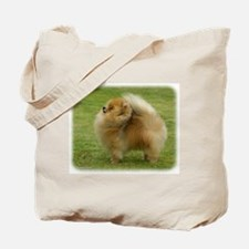 Pomeranian 9T072D-001 Tote Bag