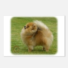 Pomeranian 9T072D-001 Postcards (Package of 8)