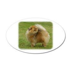 Pomeranian 9T072D-001 22x14 Oval Wall Peel