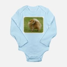 Pomeranian 9T072D-001 Long Sleeve Infant Bodysuit
