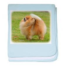 Pomeranian 9T072D-014 baby blanket