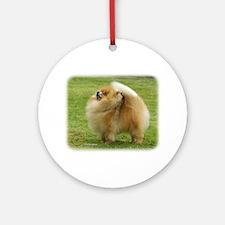 Pomeranian 9T072D-014 Ornament (Round)