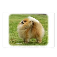 Pomeranian 9T072D-014 Postcards (Package of 8)