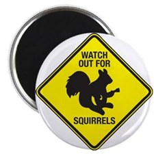 Watch Out For Squirrels Magnet