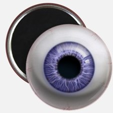 The Eye: Lavender Magnet