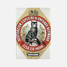 Barcelona Cat Rectangle Magnet