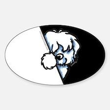 Peeking Coton de Tulear Sticker (Oval)