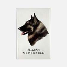 Belgian Shepherd Dog Rectangle Magnet