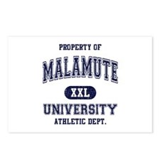 Malamute Postcards (Package of 8)
